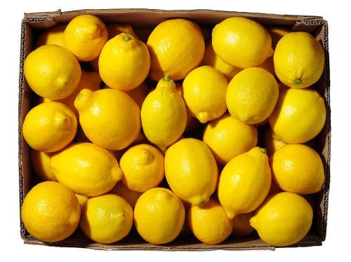 Imágen de Limón